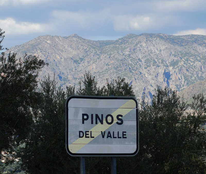 Road Sign Pinos Del Valle