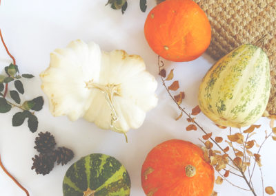 Autumn in Spain, Fall Flatlay with pumpkins gourds and squashes